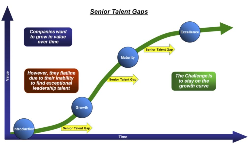 Senior Talent Gaps 2